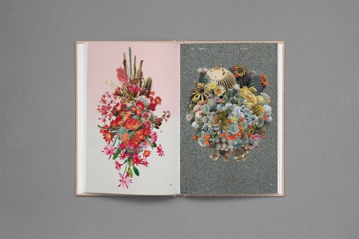 Strange Plants is a celebration of plants in contemporary art – Zioxla