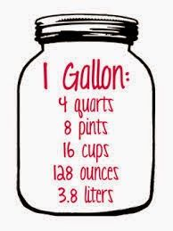 Transformation Coach Pam: Gallon of Water Challenge!