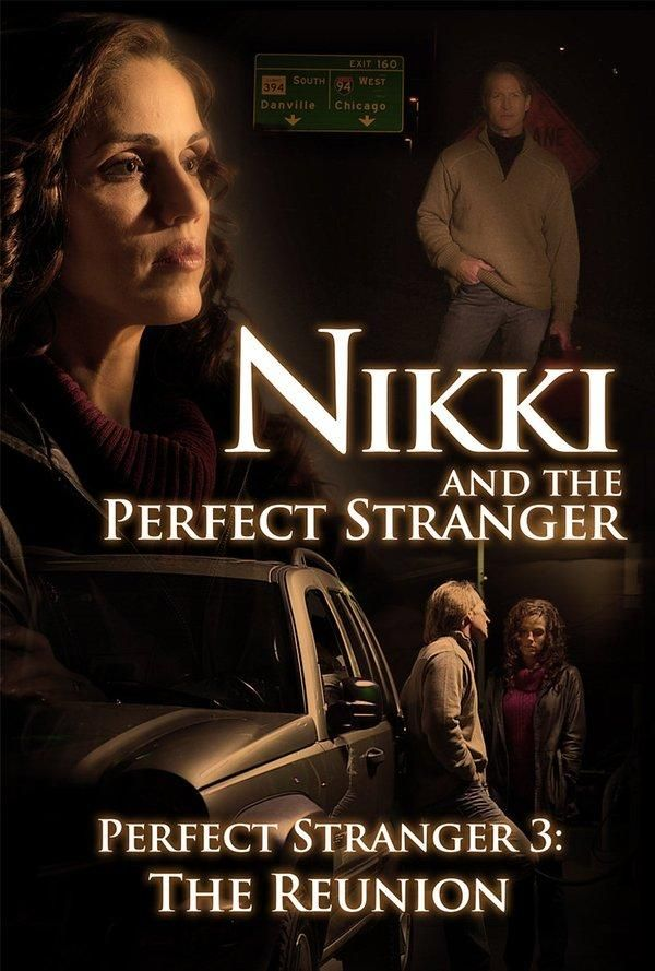 Nikki and the Perfect Stranger (2013)