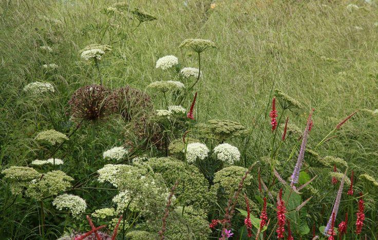 Sarah Price_Olympic Great British Garden