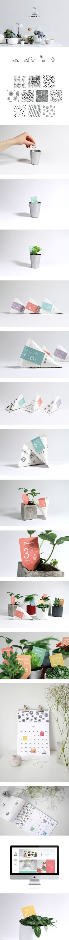 Really like the mixed colour palette, and the use of a single colour on each package. Love the illustrations created for each design, very simple and minimal and the hand drawn element makes it feel friendly and approachable.