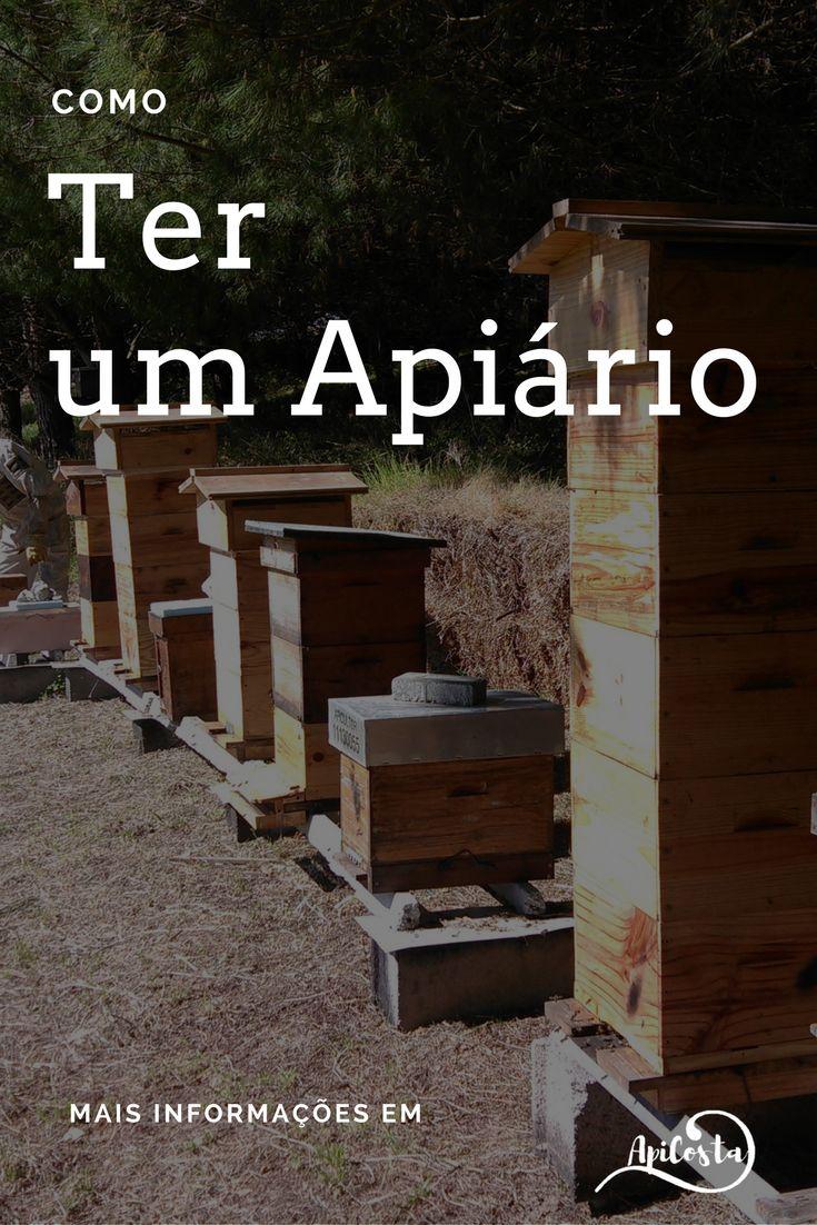 Como ter um apiário para apicultores iniciantes