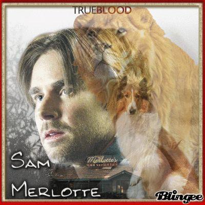 Sam Merlotte