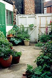 1000 images about small garden spaces on pinterest - Terraced house backyard ideas ...