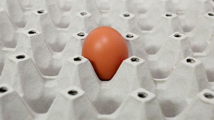 Sie wollen einen Kuchen backen und haben nicht genug Eier oder Mehl im Haus? Ein Konditor verrät, wie Sie die Zutaten ersetzen können.