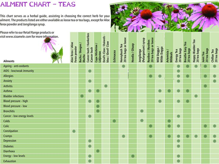 herbal manufacturing how to make medicines from plants