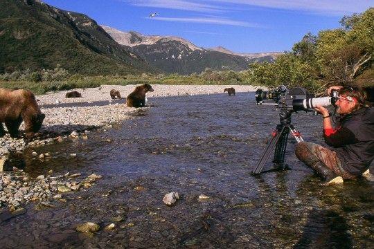 Mit Sicherheitsabstand zum Bären: Andreas Kieling bei der Arbeit