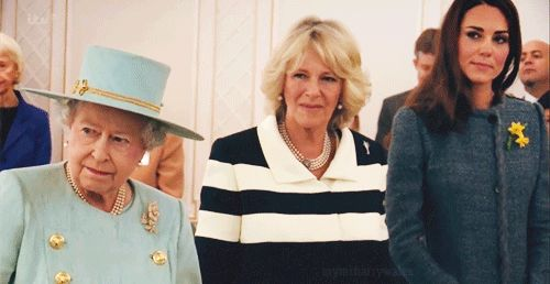 Her Majesty, Queen Elizabeth, master of shade...and Camilla duchess of shade. Kate's still too new to the club.