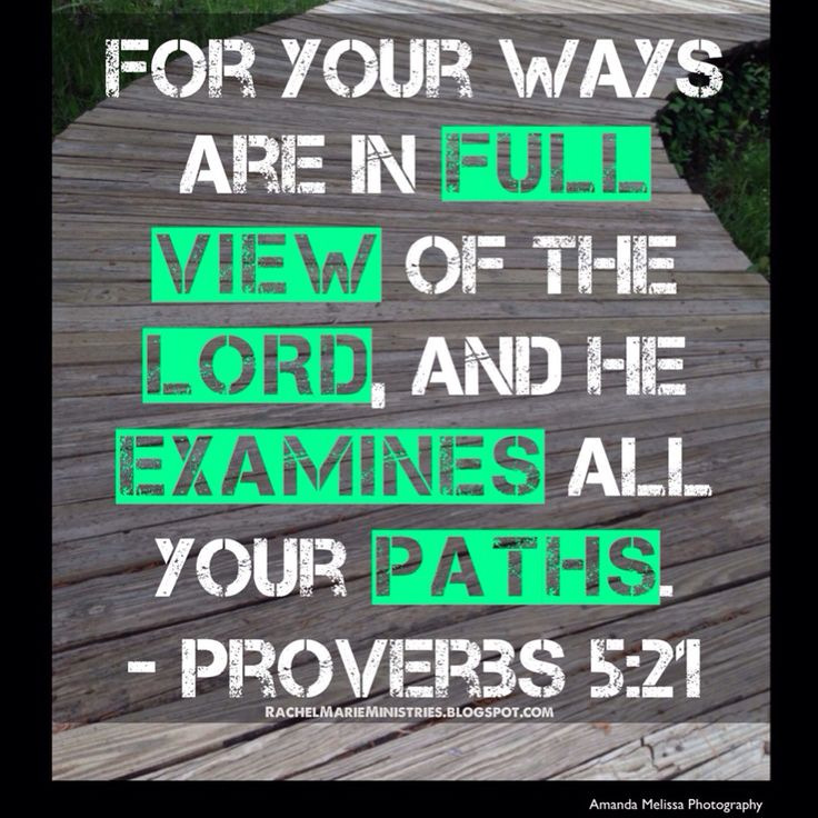 Proverbs 31 Man Book – Daily Motivational Quotes
