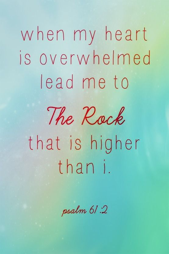 When I'm overwhelmed... I pray for God to help me take a step back, look at the big picture, and remember what really is important.