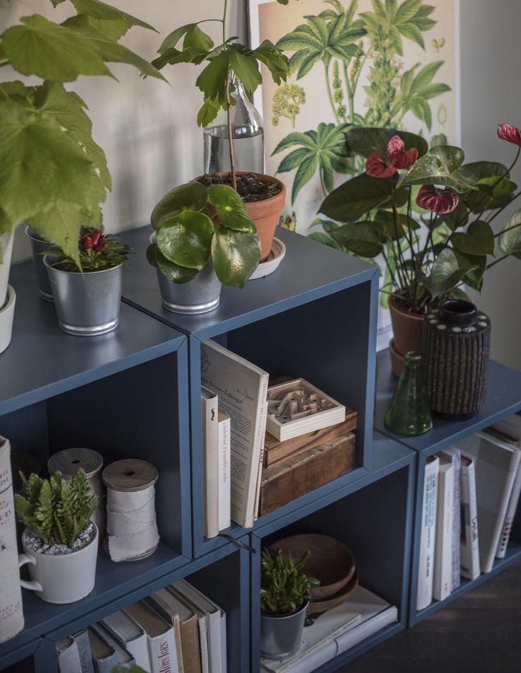 IKEA Deutschland | Das EKET Regal ist so vielfältig, hier einmal dekoriert mit vielen grünen Pflanzen. #Wohnzimmer #Bücherregal #Pflanzen #Wohnzimmerdekoration #Wohnzimmerinspiration