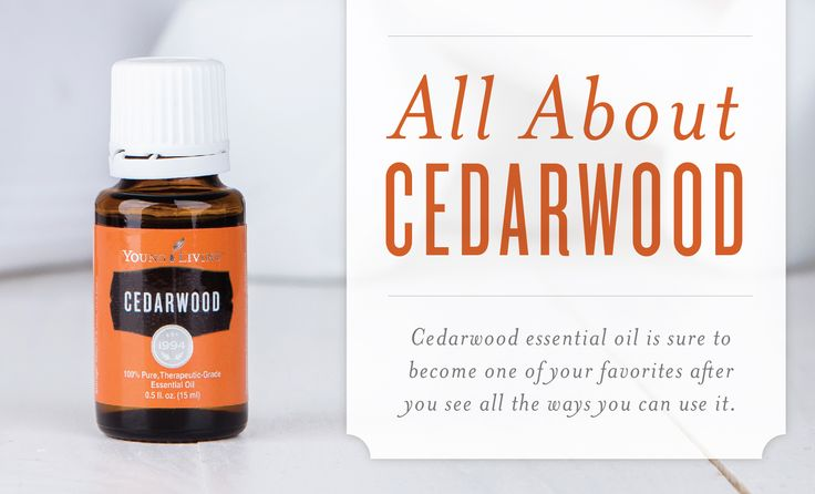 Cedarwood essential oil holds a special place in our hearts—and among our favorite beauty and personal care products! Cedar oil is a wonderful complement to your hair and skin care regimen, and the Cedarwood scent is evocative of the strong, tall trees it comes from.  In this infographic, we're sharing some of our favorite factoids about ...