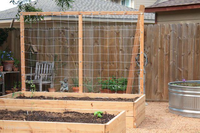 Vertical trellis for box garden garden pinterest trellis beds and raised beds - Building trellises property ...