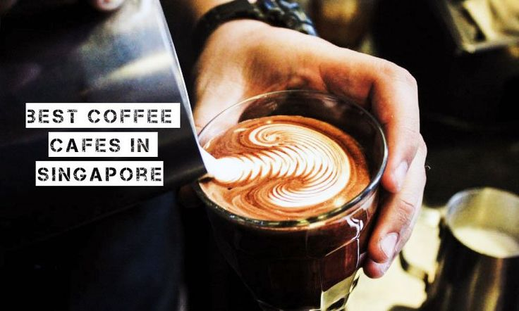 Best Coffee Cafes in Singapore: The Ultimate Guide