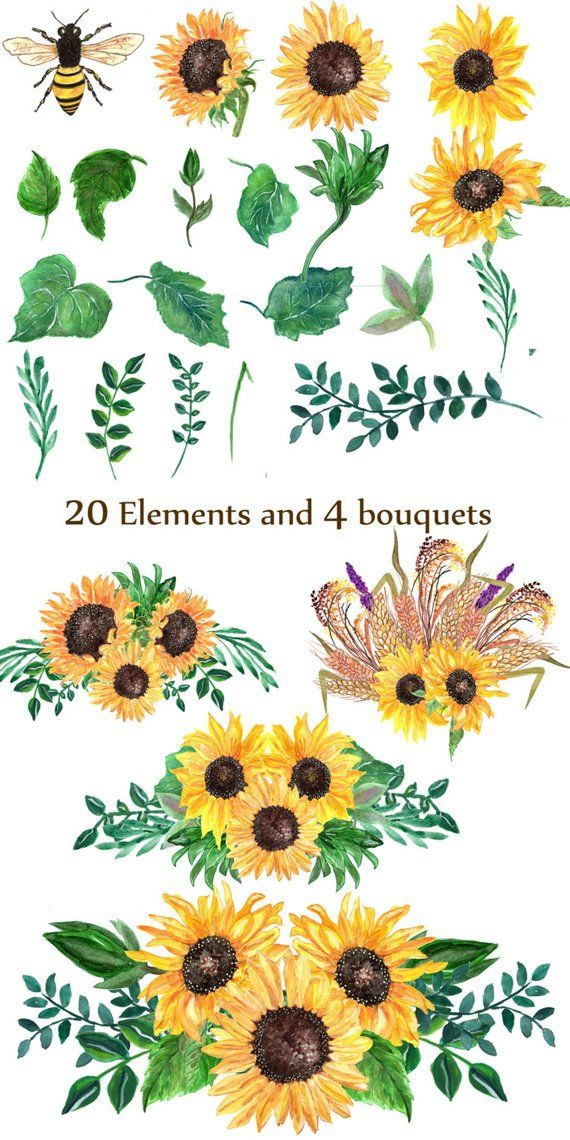 Sunflower Watercolor Clip Art Floral Clip Art Wedding Clip Art