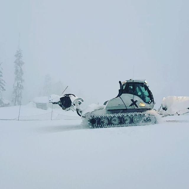 48cm in 24 hours Part II: Kudos to the Mt Seymour staff working away outside, clearing slopes with the snowcat, organizing the parking lots and road. Awesome team! Tomorrow will be a great day - sun in the forecast! Come up for powder fun!  #mtseymour #snow #powder #vancity #vancouver #skiing #snowboarding