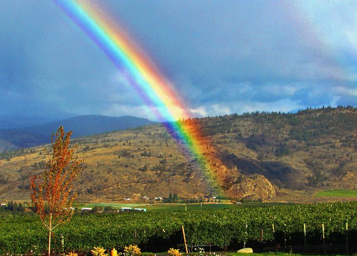Storm Clouds and Rainbow - Near Osoyoos, B.C. - October 2009