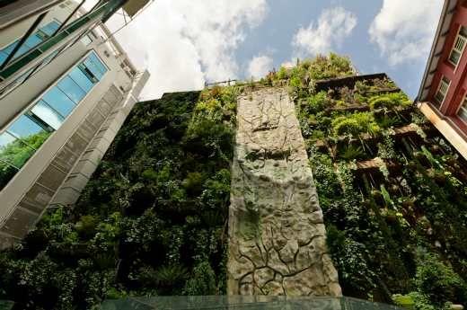 Lunes de mayo.- Existe un enclave mágico, único, oculto en el corazón de la capital. Es el jardín vertical más grande del mundo y así lo reconoce el libro de récords de mayor prestigio. http://bit.ly/HCIDZJ