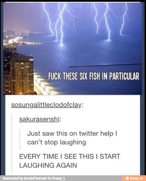What'd those fish ever do to u!?