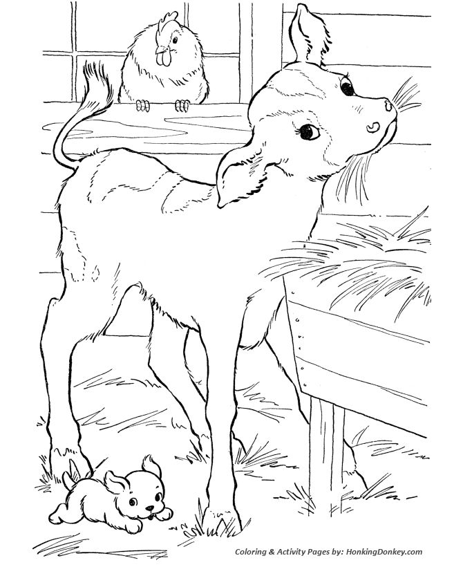 11 best 4 H Activities images on Pinterest Drawings Farm