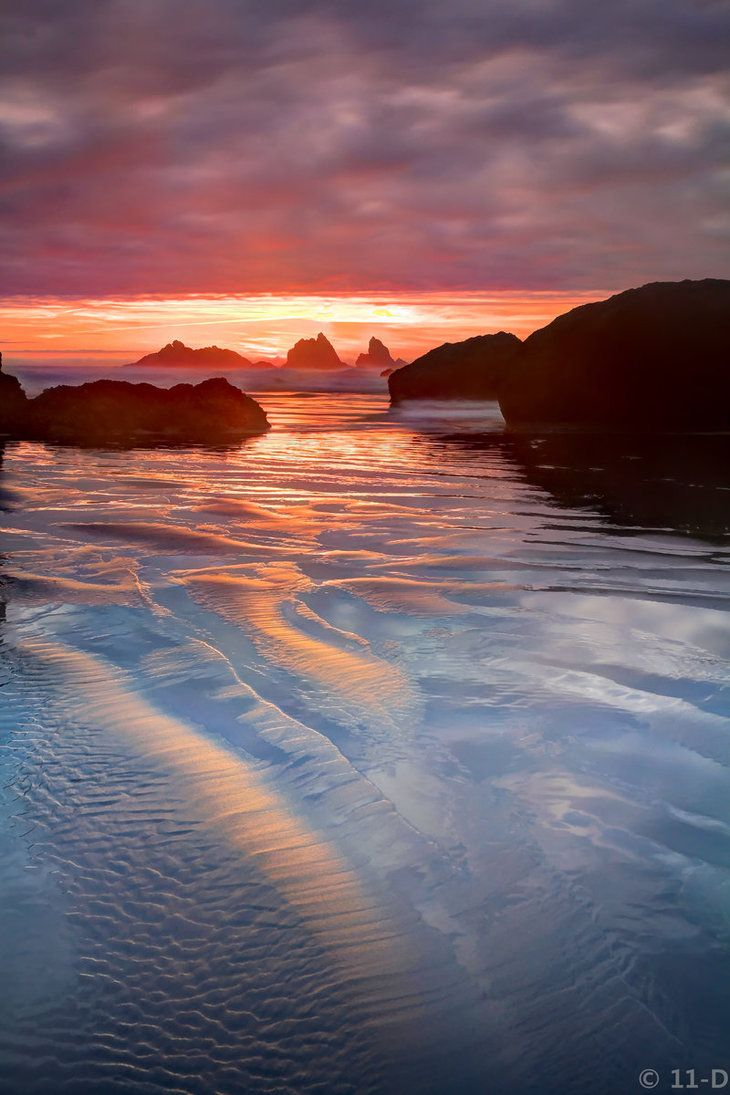 17 best images about portlandia tasty n sons ~~dreams wash away gently lapping waves and a pink sunset bandon oregon by