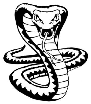 King Cobra Snake Drawings