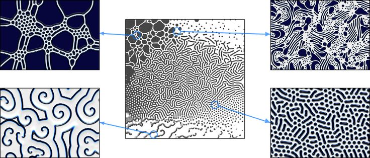 reaction-diffusion pattern map with examples