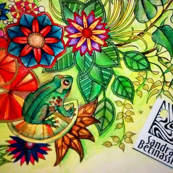 Instagram Sandrabetinassi Adult ColoringColoring BooksColouringBook DesignJohanna Basford Secret GardenArt