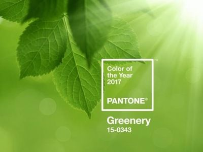 'Greenery' - Colour of the Year 2017