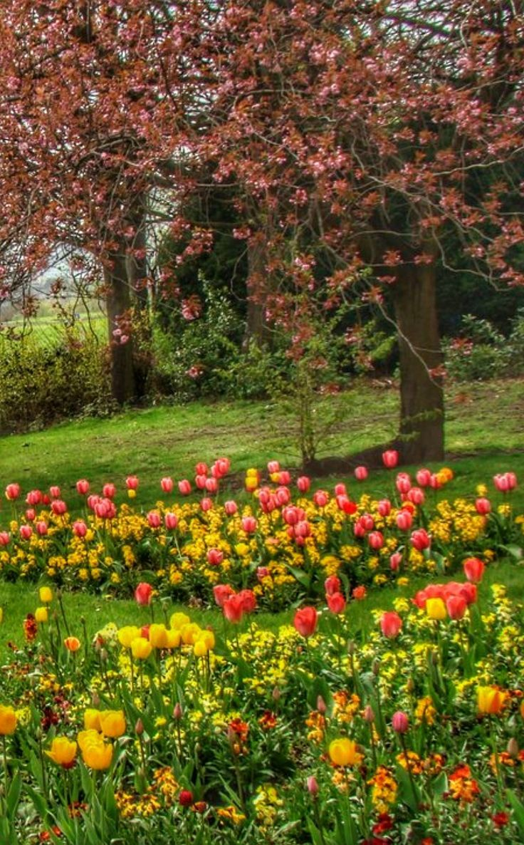 The Beauty Of Spring Beautiful Nature Pictures Beautiful Nature Spring Scenery