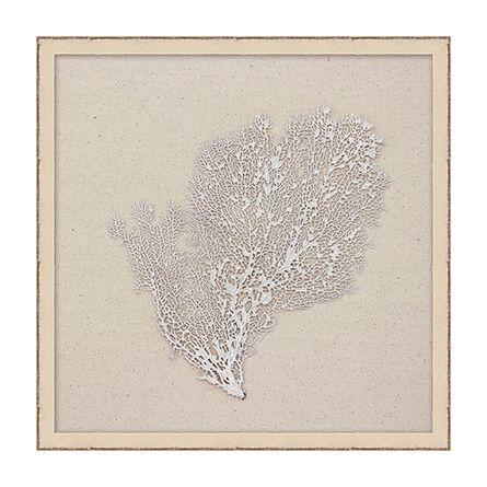 Metallic Pearl Sea Fan Print