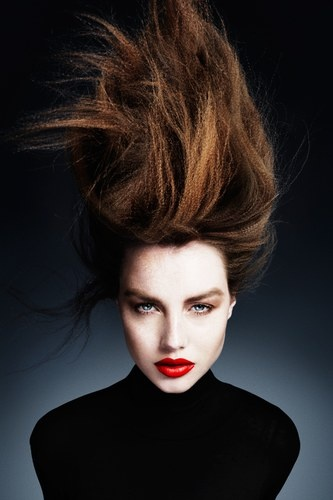 Brown hair in up do by Ken Picton.