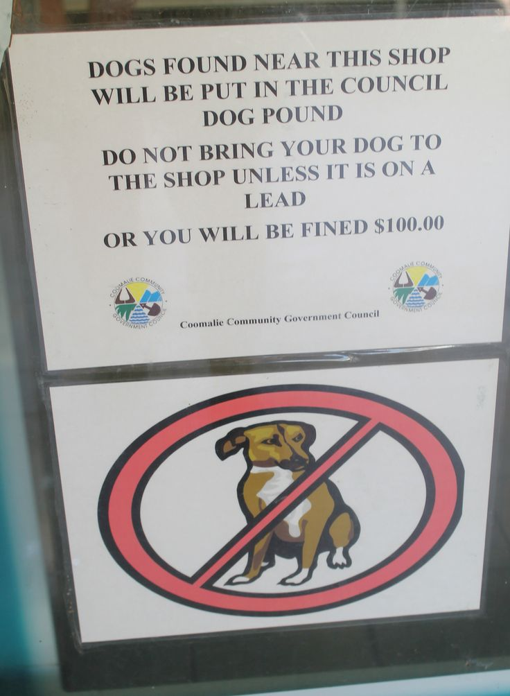 A not very dog-friendly shop at Batchelor, Northern Territory