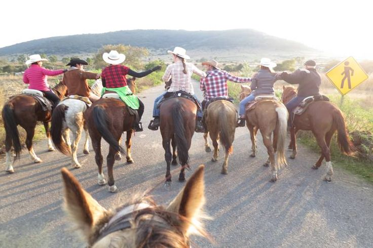 """Let's tell everyone about the wonderful riding vacation you have experienced at the Rancho.  """"Share"""" if you agree and tell us your favorite memory!!! http://rancholascascadas.com/ride/"""