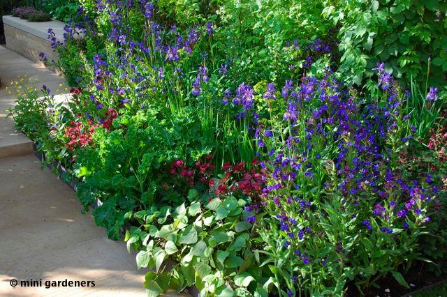 Homebase garden Chelsea