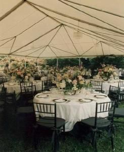 Tudor Place is a national historic landmark that offers garden rooms making it the perfect location for an outdoor wedding.  Weekend rentals start at $3,000. http://www.eventective.com/USA/Dist+of+Columbia/Washington/68049/Tudor-Place-Historic-House-and-Garden.html