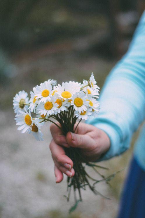 For My Aunt Shell~ Love You September~ - Gardening Living