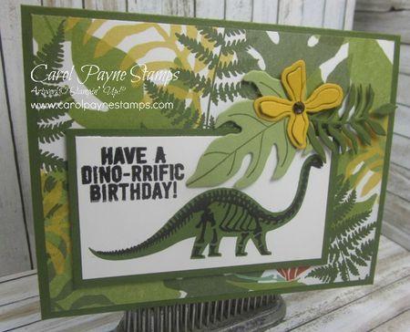 Stampin' Up!, No Bones About It, Botanical Blooms, Botanical Gardens Bundle, #imbringingbirthdaysback, Stamp-a-Stack, DIY handmade birthday cards, carolpaynestamps, http://www.stampinup.net/esuite/home/carolpayne/