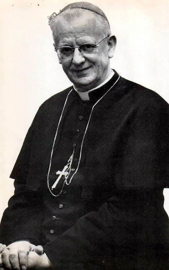 Cardinal Heenan, Biafra and Christendom.