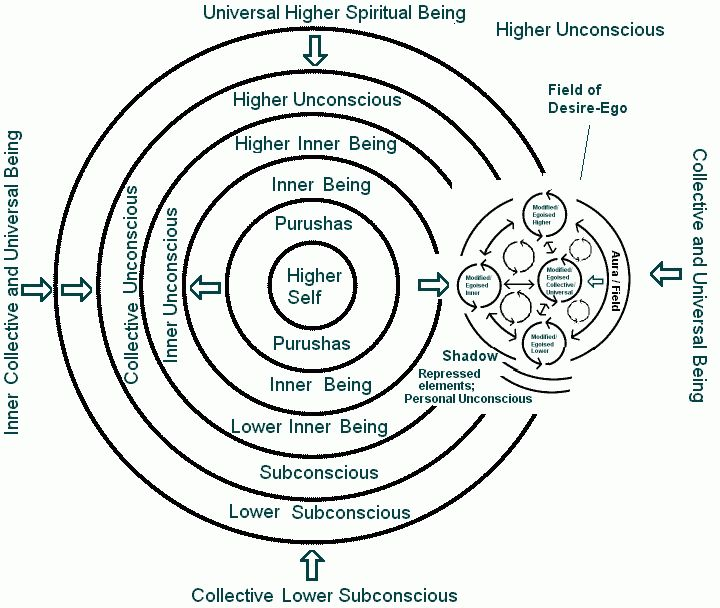 "The Larger Psyche Gestalt. Depth psychology distinguishes between the conscious mind or Ego, and the Unconscious (in Jungian psychology this latter is further divided into individual and collective). In Sri Aurobindo's psychology, these are the surface consciousness or ""Outer Being"", and the Subliminal or Inner Being (in a sense ""higher"") and Subconscient (""lower"", equivalent to the Freudian Unconscious),"