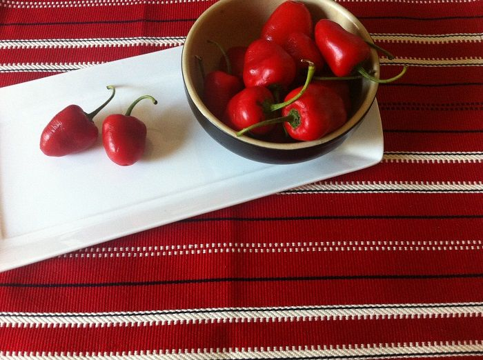 "PIROSKA is fiery hot chillies on a 'Caravan' table runner. I just love red on red....It's just screams ""WOW""! www.piroska.com.au"