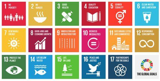 El mundo tiene 17 objetivos para 2030. ¿Cuál es el tuyo?   Planeta Futuro   EL PAÍS
