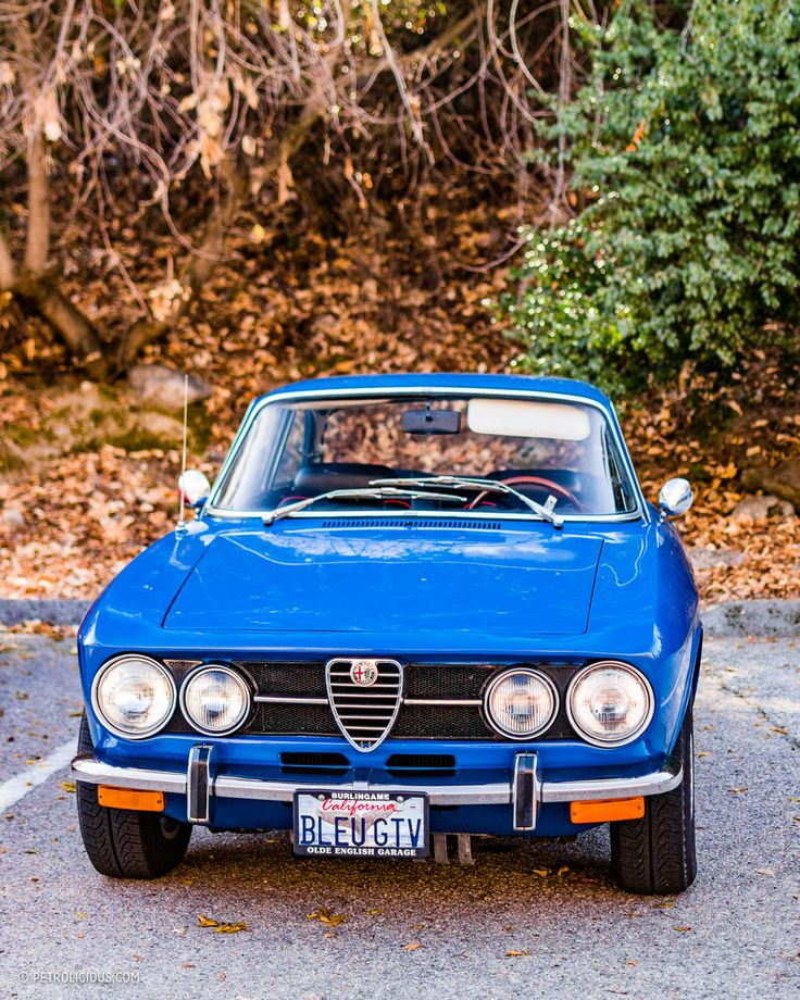 Best 25+ Fiat Alfa Romeo Ideas On Pinterest