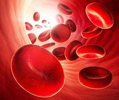 Blutgerinnung | Medizinlexikon