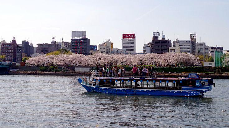 隅田公園4.jpg  http://www.jnize.com/en/article/100000034/