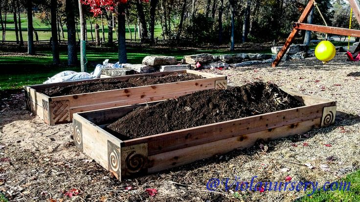 23 Best Images About Organically Grown Foods On Pinterest Gardens Raised Beds And Earwigs