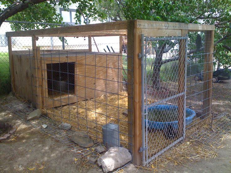 Building a secure chicken enclosure this article is for Winter duck house