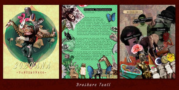 "Diseño Brochure ""Silvana Tantimonaco"", Diseñadora de interiores. Bogotá"