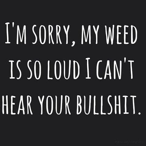 ☮ American Hippie Weed Quotes ~ Can't hear your bullshit
