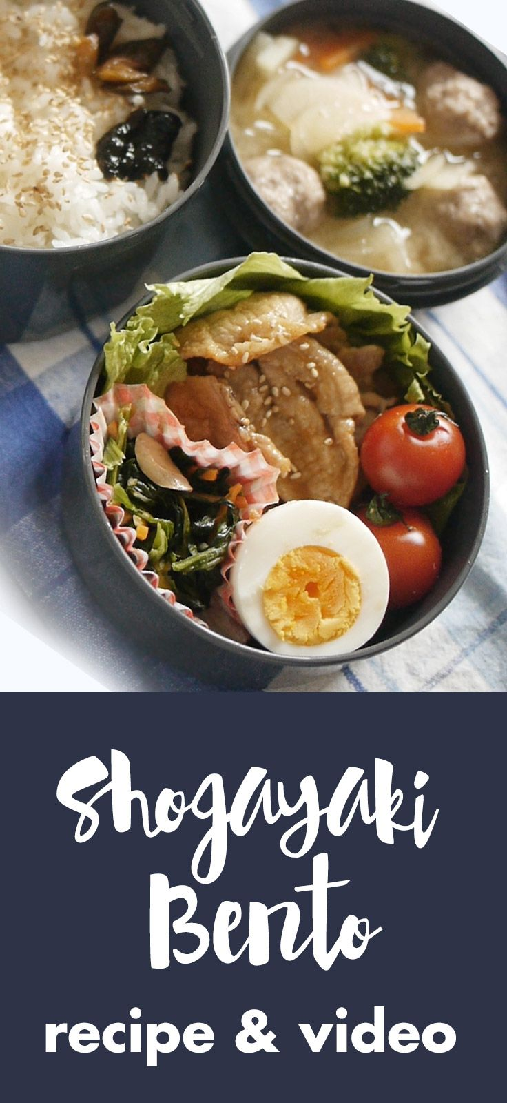 A video tutorial on how to make a Shogayaki (Ginger fried pork) bento lunchbox. visit our site for 100 quick and easy traditional japanese bento lunch box recipes and ideas for adults!  Pin now for later!